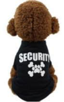 Security Paw